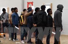 Trục xuất người xin tị nạn Bắc Phi là bài toán khó với Đức
