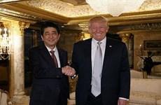 Nhật-Mỹ nhất trí sớm tổ chức cuộc gặp giữa ông Abe và Trump