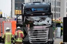 Nghi phạm bị bắt ở Tunisia không liên quan đến tấn công tại Berlin