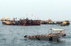 Trung Quốc giảm lượng cá đánh bắt để bảo vệ hệ sinh thái biển