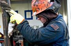 Giá dầu thế giới giảm trong khi khai thác dầu mỏ ở Mỹ tăng cao