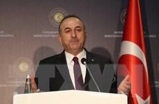 Thổ Nhĩ Kỳ nỗ lực tăng cường hợp tác với các nước Mỹ Latinh