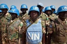 Lực lượng LHQ không kích tiêu diệt phiến quân ở Cộng hòa Trung Phi