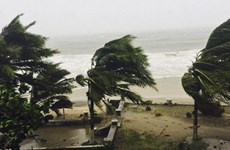 Hơn 10.000 người phải sơ tán do bão Enawo đổ bộ vào Madagascar