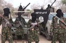 Cameroon giải cứu 5.000 dân thường bị Boko Haram bắt giữ