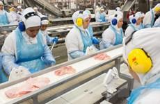 Bộ trưởng Nông nghiệp Brazil: Cảnh sát thổi phồng vụ bê bối thịt bẩn