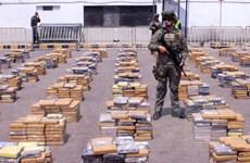 Colombia thu giữ một tấn cocain đang trên đường tới châu Âu
