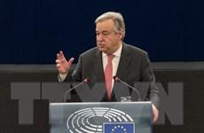 LHQ kêu gọi giải pháp hai nhà nước cho xung đột Israel-Palestine