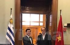 Thứ trưởng Ngoại giao tiến hành tham khảo chính trị tại Uruguay