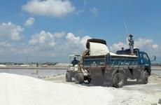 Lượng muối tồn giảm do thời tiết phức tạp làm sản lượng giảm