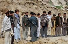 Lực lượng an ninh Afghanistan tiêu diệt 7 thủ lĩnh phiến quân Taliban
