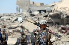 Iraq tiêu diệt 9 tay súng IS tại khu vực gần biên giới với Syria