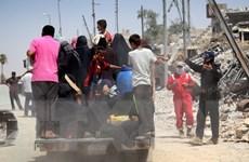Iraq tiêu diệt 66 phiến quân của tổ chức Nhà nước Hồi giáo