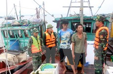 Quảng Ninh đưa đường dây nóng bảo vệ nguồn lợi thủy sản vào hoạt động
