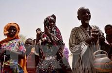 Trên 500 dân thường Niger là nạn nhân của phiến quân Boko Haram