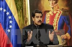 Binh sỹ và người dân Venezuela diễn tập quân sự quy mô lớn