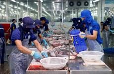 Doanh nghiệp xuất khẩu cá tra Việt Nam vẫn cần nhiều chiến lược