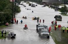 Mỹ: Thành phố Houston giới nghiêm vào ban đêm sau bão Harvey