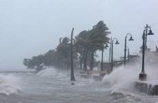 Các nước khẩn trương đối phó bão siêu bão Irma và bão Katia
