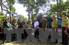 Bình Định kiểm tra, điều tra làm rõ vụ phá hơn 43ha rừng tự nhiên