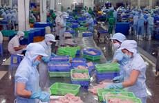 VASEP phản đối mức thuế chống bán phá giá cá tra do Hoa Kỳ đưa ra