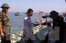 Quảng Ninh liên tiếp bắt giữ ba vụ vận chuyển cá nhập lậu