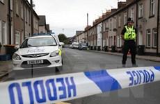 Cảnh sát Anh tiếp tục bắt nghi can vụ tấn công ga tàu điện ngầm