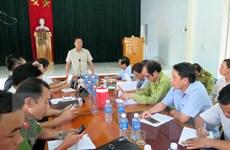 Quảng Nam: Khởi tố vụ án hình sự về tội hủy hoại rừng ở Tiên Lãnh