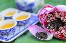 Hà Nội: Quận Tây Hồ xây dựng không gian thưởng thức trà sen