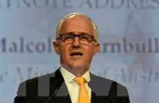 Giới chức Australia tiếp nhận trên 50.000 khẩu súng sở hữu trái phép