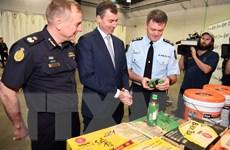 Australia bắt giữ số lượng khổng lồ tiền chất điều chế ma túy đá