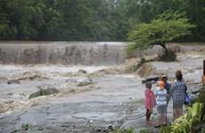 Bão nhiệt đới Nate khiến ít nhất 22 người ở Trung Mỹ thiệt mạng