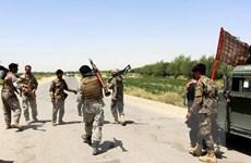 Chống khủng bố: Hai thủ lĩnh Taliban bị tiêu diệt tại Afghanistan