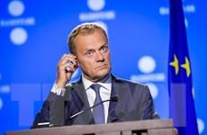 Châu Âu tăng cường thích ứng trong kỷ nguyên kỹ thuật số
