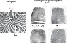 Italy-Mỹ chia sẻ dữ liệu vân tay nhằm phát hiện các phần tử cực đoan