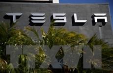 Tesla thương thảo về dự án sản xuất ôtô điện tại Trung Quốc