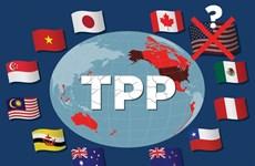 Các trưởng đoàn đàm phán TPP nhóm họp tại thủ đô Tokyo