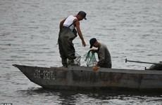 Nhật Bản đang nỗ lực tìm kiếm 12 ngư dân Triều Tiên mất tích