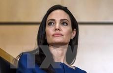 Minh tinh Angelina Jolie kêu gọi xử phạt hành vi bạo lực tình dục