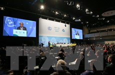 Đức: COP 23 vẫn kiên định với mục tiêu chống biến đổi khí hậu