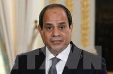 Tổng thống Sisi yêu cầu quân đội tái thiết lập an ninh tại Sinai