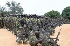 Quân đội Nigeria giải cứu hơn 200 con tin khỏi lực lượng Boko Haram
