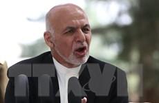 Tổng thống Ghani: Afghanistan muốn đàm phán trực tiếp với Pakistan