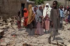 Nigeria: Nhóm Boko Haram đánh bom liều chết, sát hại ít nhất 12 người