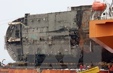 Vụ chìm phà Sewol: Công tố viên khám xét trụ sở Bộ Đại dương-Nghề cá