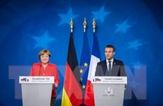 Pháp, Đức hối thúc thực thi giải pháp hòa bình ở miền Đông Ukraine