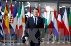 Tổng thống Pháp bị chỉ trích vì kế hoạch kiểm soát người thất nghiệp