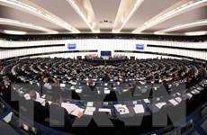 Nghị viện châu Âu xem xét việc tinh giảm số nghị sỹ sau Brexit