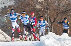 Hàn Quốc cân nhắc thành lập đội trượt tuyết chung với Triều Tiên