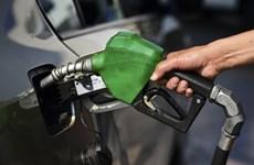 Giá dầu tiếp tục giảm trước khi Mỹ công bố lượng dầu dự trữ